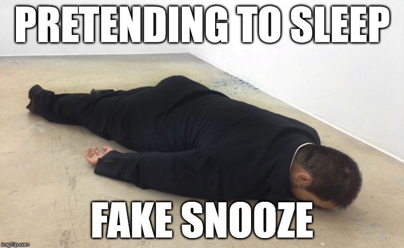 Fake Snooze | PRETENDING TO SLEEP FAKE SNOOZE | image tagged in sleep,pretend,fake news,floor | made w/ Imgflip meme maker