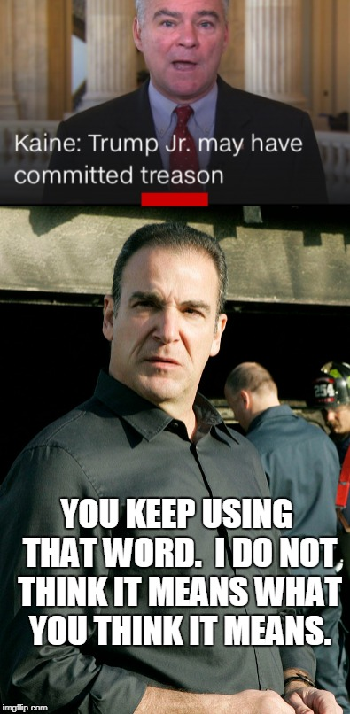 Mandy Patinkin weighs in on anti-Trump politics | YOU KEEP USING THAT WORD.  I DO NOT THINK IT MEANS WHAT YOU THINK IT MEANS. | image tagged in picture,politics,inigo montoya,treason,trump | made w/ Imgflip meme maker