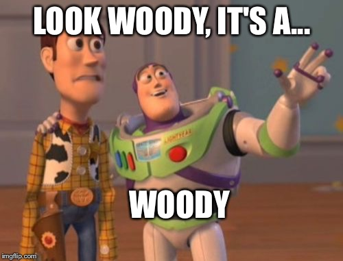 X, X Everywhere Meme | LOOK WOODY, IT'S A... WOODY | image tagged in memes,x,x everywhere,x x everywhere | made w/ Imgflip meme maker