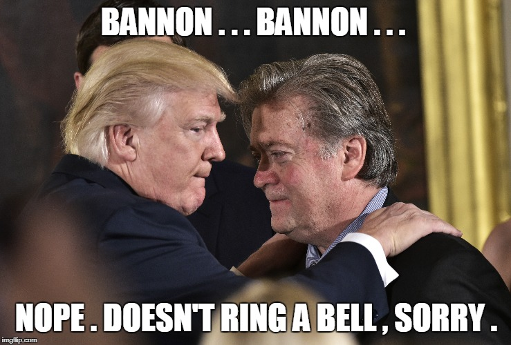 BANNON . . . BANNON . . . NOPE . DOESN'T RING A BELL , SORRY . | image tagged in trump,bannon | made w/ Imgflip meme maker