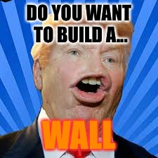 DO YOU WANT TO BUILD A... WALL | image tagged in funny memes | made w/ Imgflip meme maker