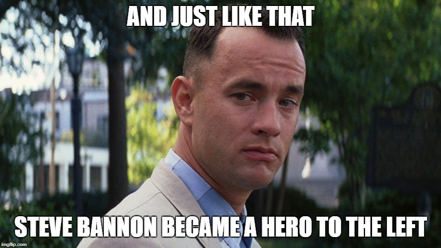 Gump | AND JUST LIKE THAT STEVE BANNON BECAME A HERO TO THE LEFT | image tagged in bannon,forrestgump | made w/ Imgflip meme maker