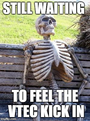 Waiting Skeleton Meme | STILL WAITING TO FEEL THE VTEC KICK IN | image tagged in memes,waiting skeleton | made w/ Imgflip meme maker