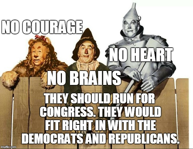 Sad thing is people would still vote for them... | NO COURAGE THEY SHOULD RUN FOR CONGRESS. THEY WOULD FIT RIGHT IN WITH THE DEMOCRATS AND REPUBLICANS. NO HEART NO BRAINS | image tagged in wizard of oz,cowardly lion,scarecrow,tin man,congress,memes | made w/ Imgflip meme maker
