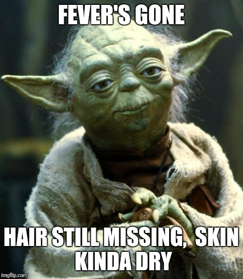 Star Wars Yoda Meme | FEVER'S GONE HAIR STILL MISSING,  SKIN KINDA DRY | image tagged in memes,star wars yoda | made w/ Imgflip meme maker