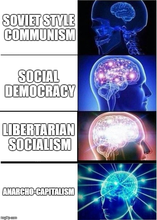 Right Libertarianism also works at the bottom. | SOVIET STYLE COMMUNISM SOCIAL DEMOCRACY LIBERTARIAN SOCIALISM ANARCHO-CAPITALISM | image tagged in memes,expanding brain,democracy,libertarianism,capitalism,anarchism | made w/ Imgflip meme maker