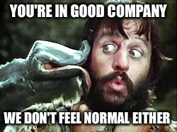YOU'RE IN GOOD COMPANY WE DON'T FEEL NORMAL EITHER | made w/ Imgflip meme maker
