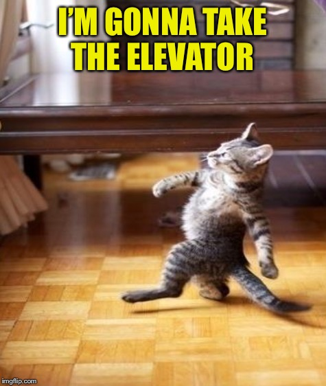 I'M GONNA TAKE THE ELEVATOR | made w/ Imgflip meme maker
