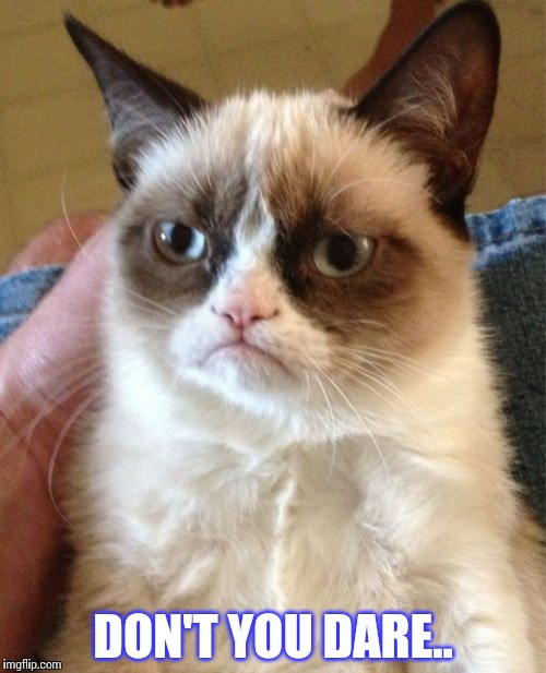 Grumpy Cat Meme | DON'T YOU DARE.. | image tagged in memes,grumpy cat | made w/ Imgflip meme maker