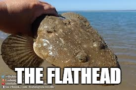 THE FLATHEAD | made w/ Imgflip meme maker