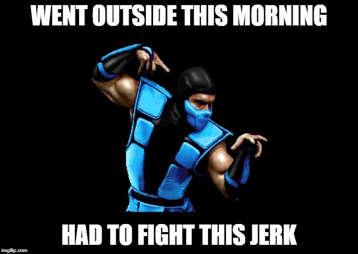 Subzero | WENT OUTSIDE THIS MORNING HAD TO FIGHT THIS JERK | image tagged in subzero | made w/ Imgflip meme maker