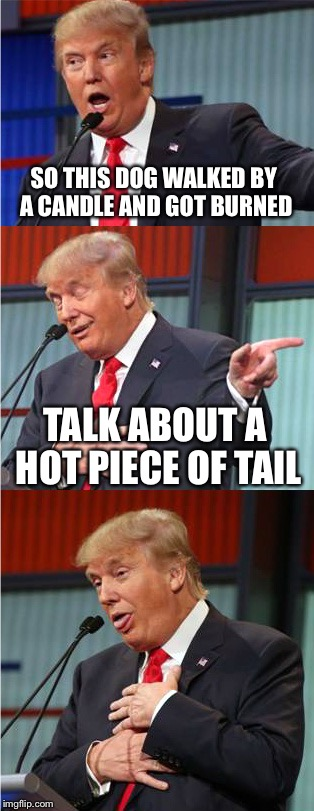 Bad Pun Trump | SO THIS DOG WALKED BY A CANDLE AND GOT BURNED TALK ABOUT A HOT PIECE OF TAIL | image tagged in bad pun trump,memes,funny | made w/ Imgflip meme maker