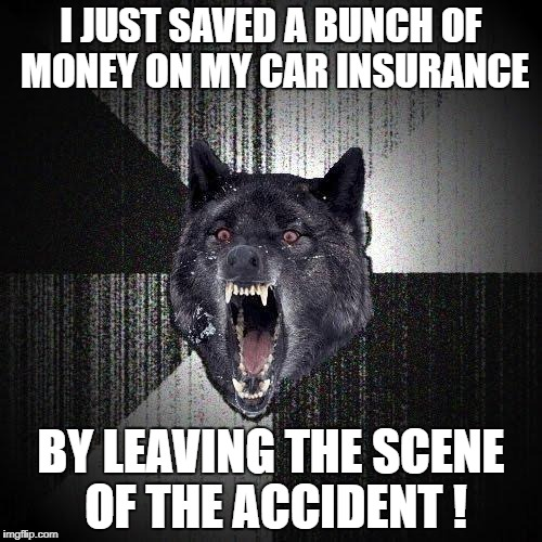 Insanity Wolf Meme | I JUST SAVED A BUNCH OF MONEY ON MY CAR INSURANCE BY LEAVING THE SCENE OF THE ACCIDENT ! | image tagged in memes,insanity wolf | made w/ Imgflip meme maker