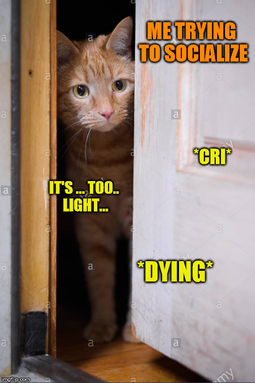 ME TRYING TO SOCIALIZE *DYING* *CRI* IT'S ... TOO.. LIGHT... | made w/ Imgflip meme maker