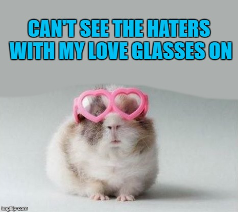 love glasses  | CAN'T SEE THE HATERS WITH MY LOVE GLASSES ON | image tagged in glasses | made w/ Imgflip meme maker
