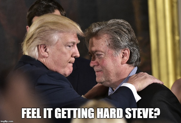 FEEL IT GETTING HARD STEVE? | image tagged in donald trump | made w/ Imgflip meme maker
