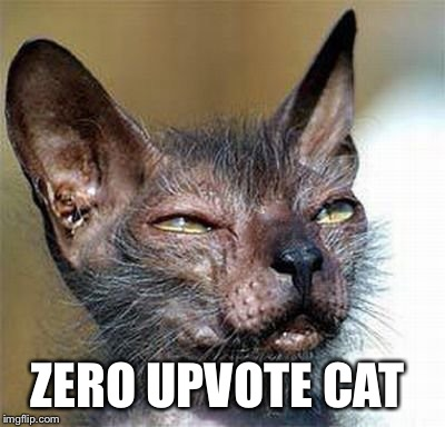 ZERO UPVOTE CAT | made w/ Imgflip meme maker