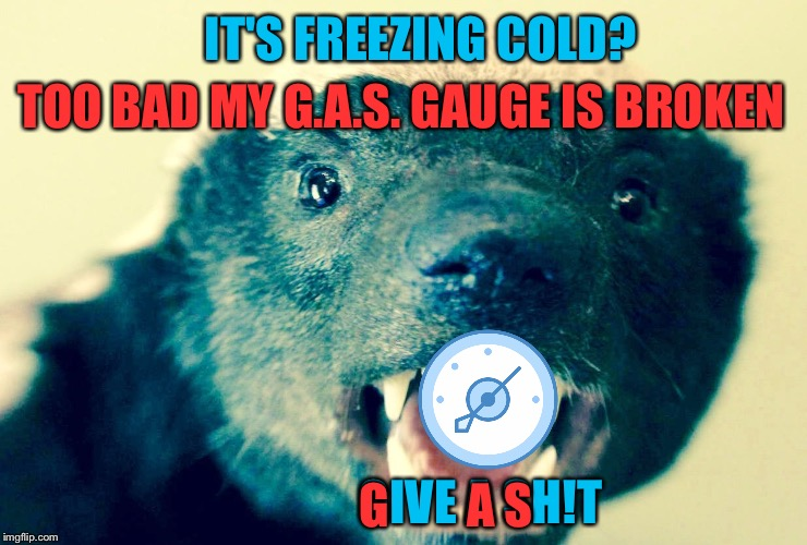 Honey Badger Don't Care | IT'S FREEZING COLD? GIVE A SH!T TOO BAD MY G.A.S. GAUGE IS BROKEN G        A S | image tagged in gas meter,honey badger,freezing,winter storm,snow | made w/ Imgflip meme maker