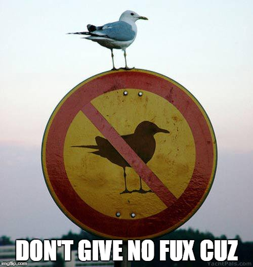 We don't give no fux. | DON'T GIVE NO FUX CUZ | image tagged in no fucks given | made w/ Imgflip meme maker
