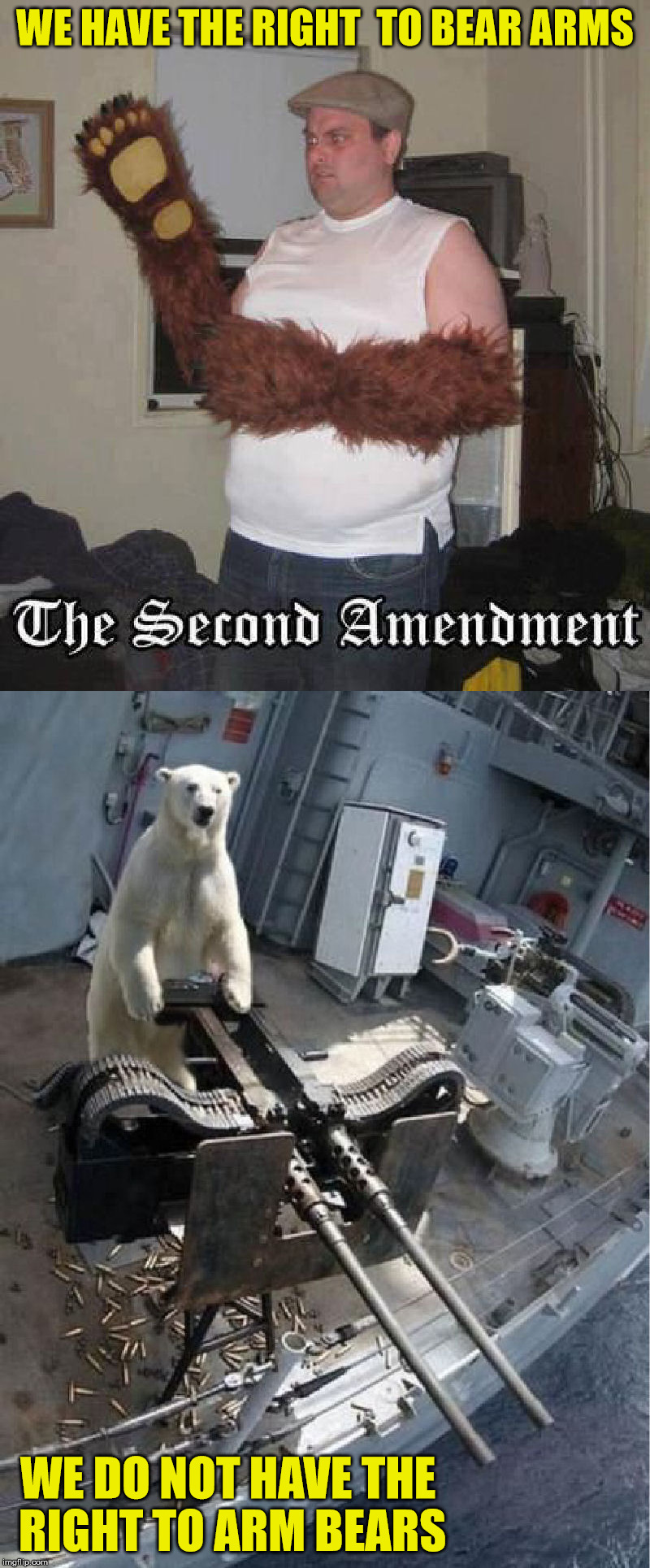 This inalienable right also requires us to not arm aliens | WE HAVE THE RIGHT  TO BEAR ARMS WE DO NOT HAVE THE RIGHT TO ARM BEARS | image tagged in second amendment,us constitution,visual pun | made w/ Imgflip meme maker