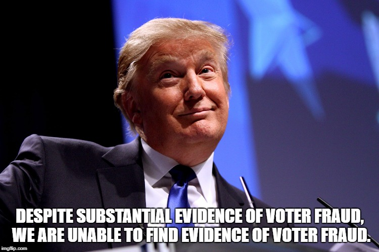 Donald Trump No2 | DESPITE SUBSTANTIAL EVIDENCE OF VOTER FRAUD, WE ARE UNABLE TO FIND EVIDENCE OF VOTER FRAUD. | image tagged in donald trump no2 | made w/ Imgflip meme maker