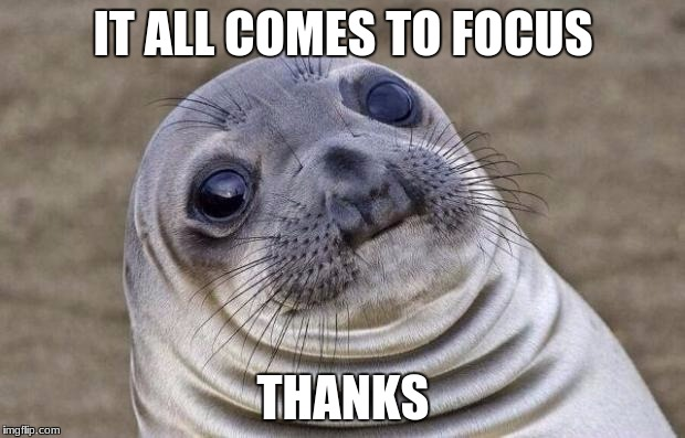 Awkward Moment Sealion Meme | IT ALL COMES TO FOCUS THANKS | image tagged in memes,awkward moment sealion | made w/ Imgflip meme maker