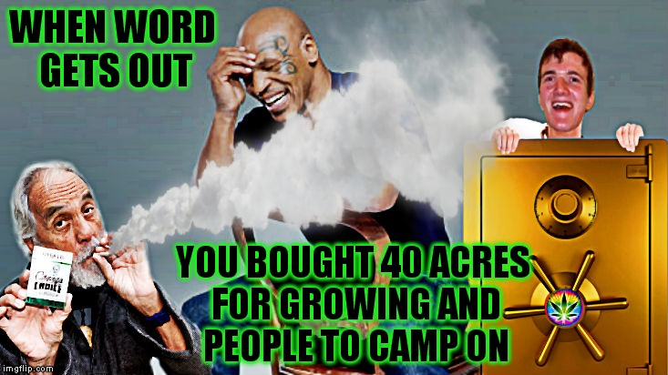 Iron Mike Token'  | WHEN WORD GETS OUT YOU BOUGHT 40 ACRES FOR GROWING AND PEOPLE TO CAMP ON | image tagged in mike tyson,growing up,stoned | made w/ Imgflip meme maker
