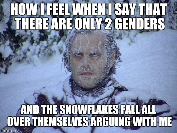 I Get Buried When I Say That I support Trump | HOW I FEEL WHEN I SAY THAT THERE ARE ONLY 2 GENDERS AND THE SNOWFLAKES FALL ALL OVER THEMSELVES ARGUING WITH ME | image tagged in memes,jack nicholson the shining snow,snowflakes | made w/ Imgflip meme maker