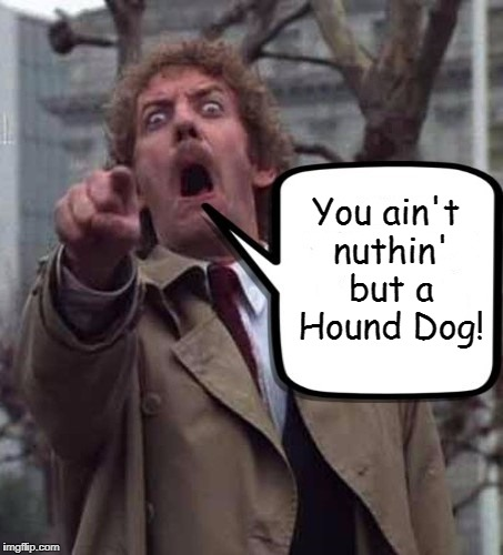 You ain't never caught a rabbit and you ain't no friend of mine!  | You ain't nuthin' but a Hound Dog! | image tagged in invasion of the body snatchers donald sutherland,elvis presley,memes | made w/ Imgflip meme maker