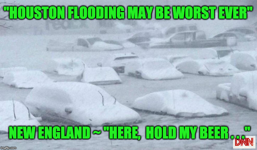 """HOUSTON FLOODING MAY BE WORST EVER"" NEW ENGLAND ~ ""HERE,  HOLD MY BEER . . ."" 