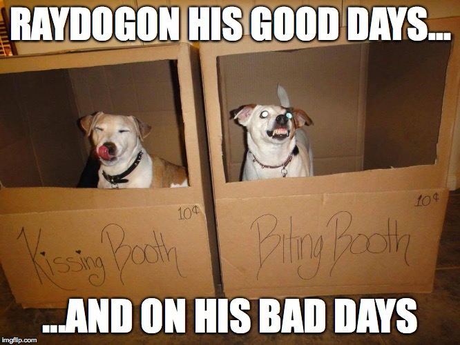 RAYDOGON HIS GOOD DAYS... ...AND ON HIS BAD DAYS | image tagged in raydog,bad luck raydog,biting,kissing,one does not simply | made w/ Imgflip meme maker
