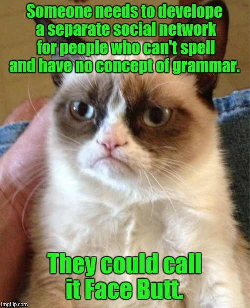 Grumpy Cat Meme | Someone needs to develope a separate social network for people who can't spell and have no concept of grammar. They could call it Face Butt. | image tagged in memes,grumpy cat | made w/ Imgflip meme maker