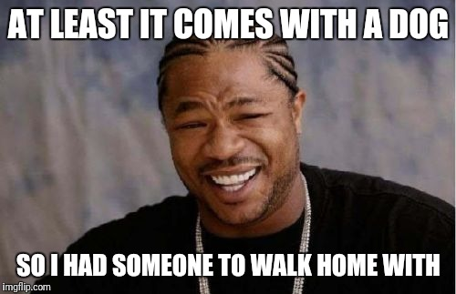 Yo Dawg Heard You Meme | AT LEAST IT COMES WITH A DOG SO I HAD SOMEONE TO WALK HOME WITH | image tagged in memes,yo dawg heard you | made w/ Imgflip meme maker