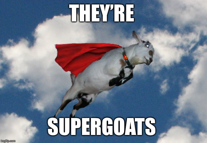THEY'RE SUPERGOATS | made w/ Imgflip meme maker
