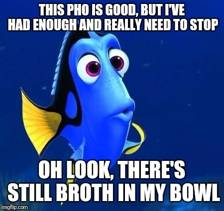 dory forgets | THIS PHO IS GOOD, BUT I'VE HAD ENOUGH AND REALLY NEED TO STOP OH LOOK, THERE'S STILL BROTH IN MY BOWL | image tagged in dory forgets,memes | made w/ Imgflip meme maker