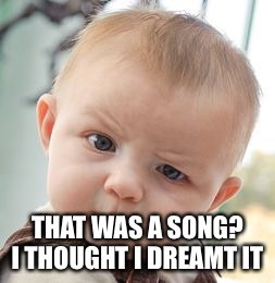 Skeptical Baby Meme | THAT WAS A SONG? I THOUGHT I DREAMT IT | image tagged in memes,skeptical baby | made w/ Imgflip meme maker