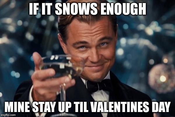 Leonardo Dicaprio Cheers Meme | IF IT SNOWS ENOUGH MINE STAY UP TIL VALENTINES DAY | image tagged in memes,leonardo dicaprio cheers | made w/ Imgflip meme maker