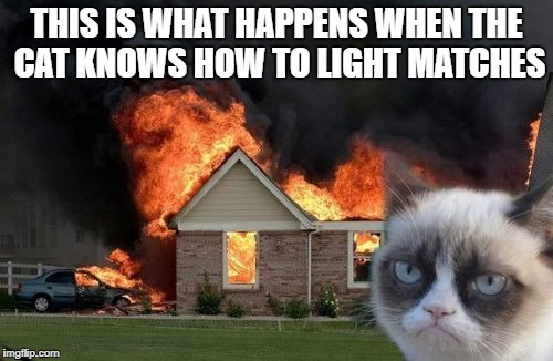 Burn Kitty Meme | THIS IS WHAT HAPPENS WHEN THE CAT KNOWS HOW TO LIGHT MATCHES | image tagged in memes,burn kitty,grumpy cat | made w/ Imgflip meme maker