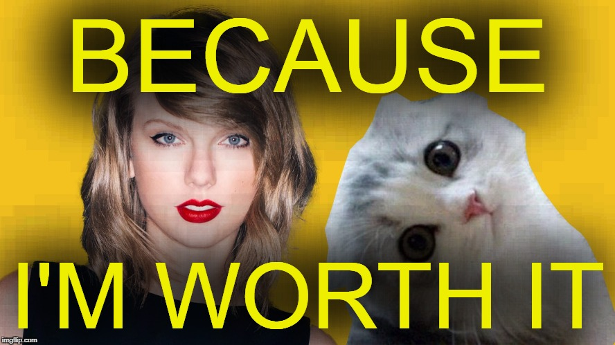 BECAUSE I'M WORTH IT | made w/ Imgflip meme maker