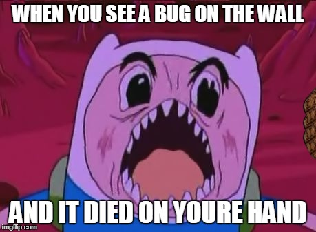 Finn The Human Meme | WHEN YOU SEE A BUG ON THE WALL AND IT DIED ON YOURE HAND | image tagged in memes,finn the human,scumbag | made w/ Imgflip meme maker
