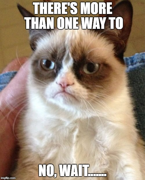 Grumpy Cat Meme | THERE'S MORE THAN ONE WAY TO NO, WAIT....... | image tagged in memes,grumpy cat | made w/ Imgflip meme maker