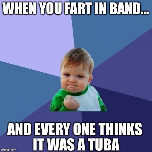 Success Kid Meme | WНEN YOU FART IN BAND... AND EVERY ONE THINKS IT WAS A TUBA | image tagged in memes,success kid | made w/ Imgflip meme maker