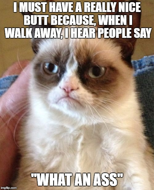 Grumpy Cat Meme I Must Have A Really Nice Butt Because When I Walk