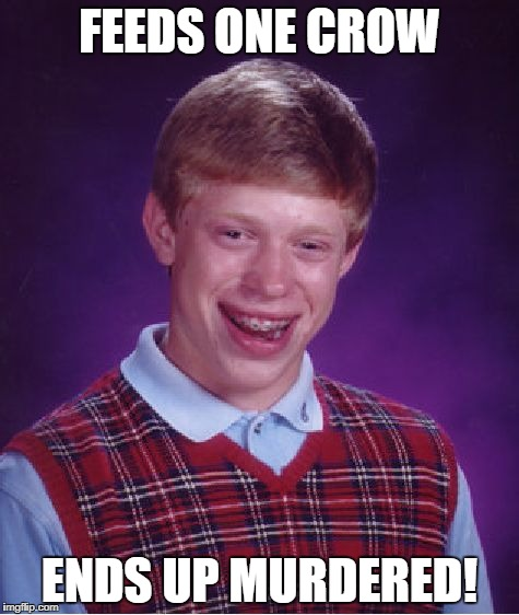 Bad Luck Brian Meme | FEEDS ONE CROW ENDS UP MURDERED! | image tagged in memes,bad luck brian | made w/ Imgflip meme maker