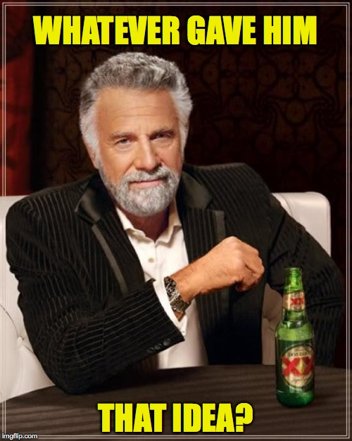 The Most Interesting Man In The World Meme | WHATEVER GAVE HIM THAT IDEA? | image tagged in memes,the most interesting man in the world | made w/ Imgflip meme maker
