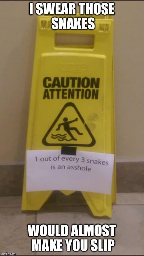 I SWEAR THOSE SNAKES WOULD ALMOST MAKE YOU SLIP | image tagged in memes,snake,the floor is,warning sign | made w/ Imgflip meme maker