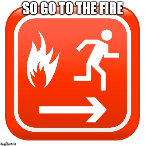 SO GO TO THE FIRE | image tagged in really | made w/ Imgflip meme maker