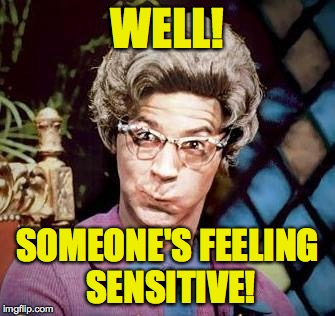 WELL! SOMEONE'S FEELING SENSITIVE! | made w/ Imgflip meme maker