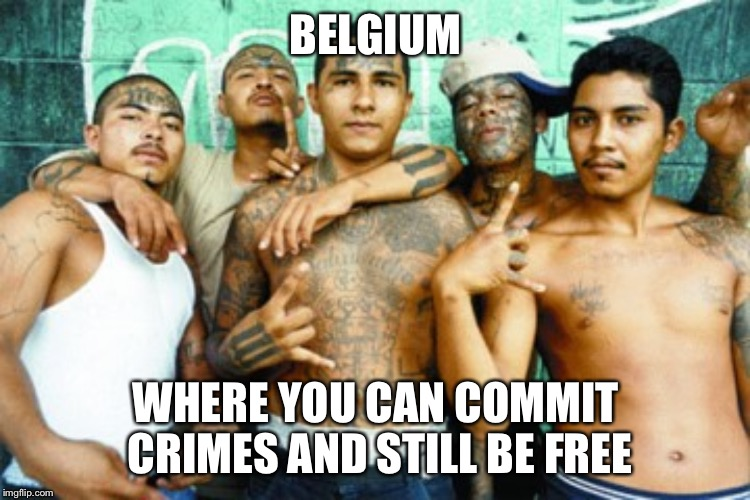 mexican gang members | BELGIUM WHERE YOU CAN COMMIT CRIMES AND STILL BE FREE | image tagged in mexican gang members | made w/ Imgflip meme maker