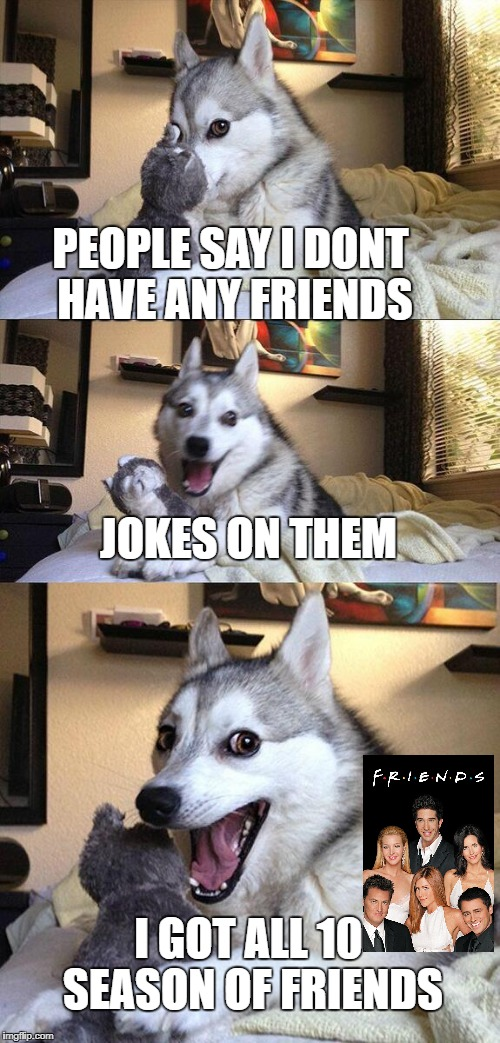 i got friends | PEOPLE SAY I DONT HAVE ANY FRIENDS JOKES ON THEM I GOT ALL 10 SEASON OF FRIENDS | image tagged in memes,bad pun dog,ssby,funny | made w/ Imgflip meme maker